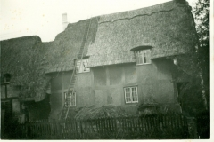 Tudor Cottage (c1930s) - The Williams House (2)